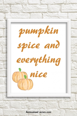 Pumpkin Spice and Everything Nice Printable orange font | www.homestead-acres.com