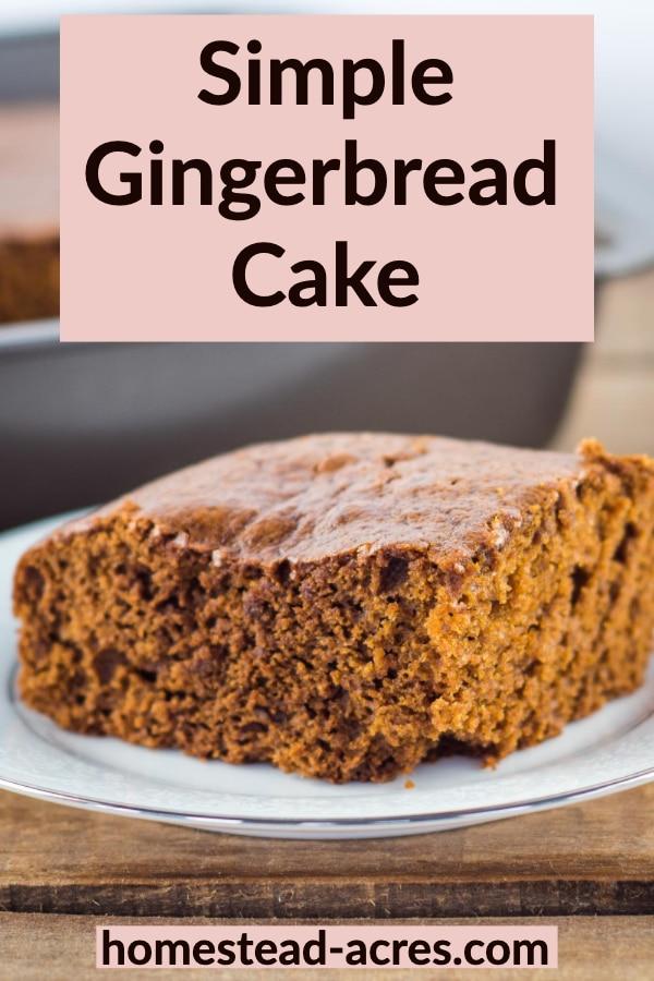 Simple Gingerbread Cake
