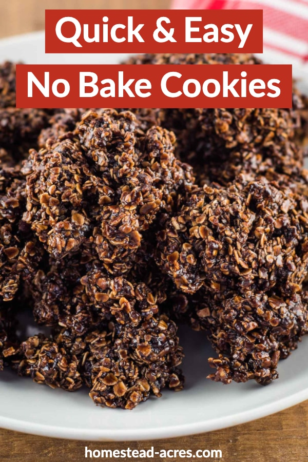 Quick And Easy No Bake Cookies