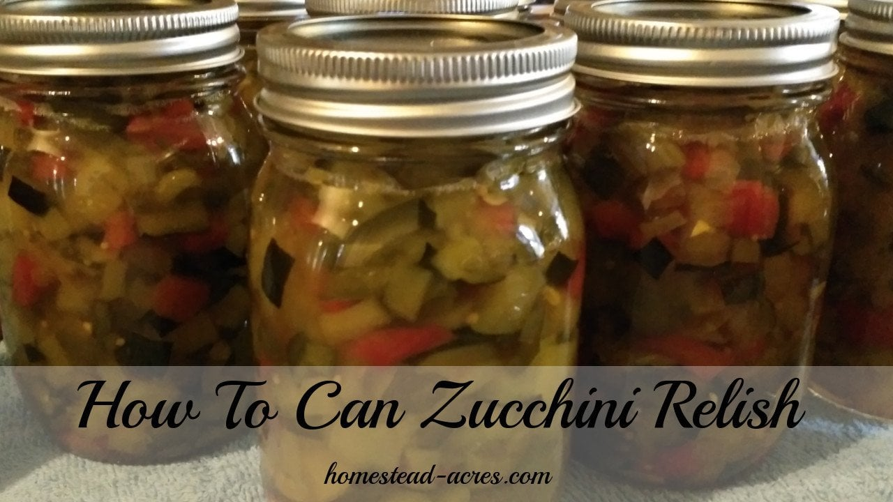 My Aunts Zucchini Relish is the BEST really! Everyone who's tried this relish just loves it. I've been making it for over 20 years and my Aunt for many years before then. This is a family favourite recipe that we enjoy making every summer. A great way to use up extra zucchini too.