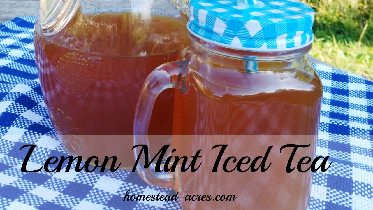 Easy Lemon Mint Iced Tea   www.homestead-acres.com