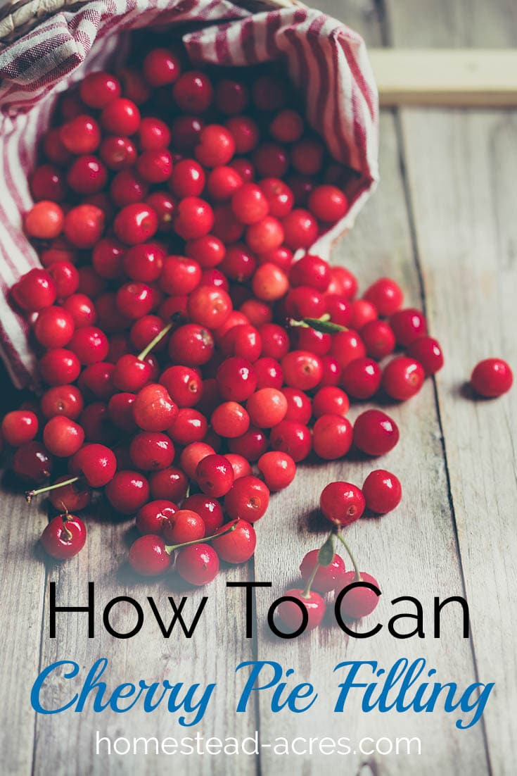 How To Can Cherry Pie Filling. A easy homemade cherry pie filling you can enjoy all year. www.homestead-acres.com