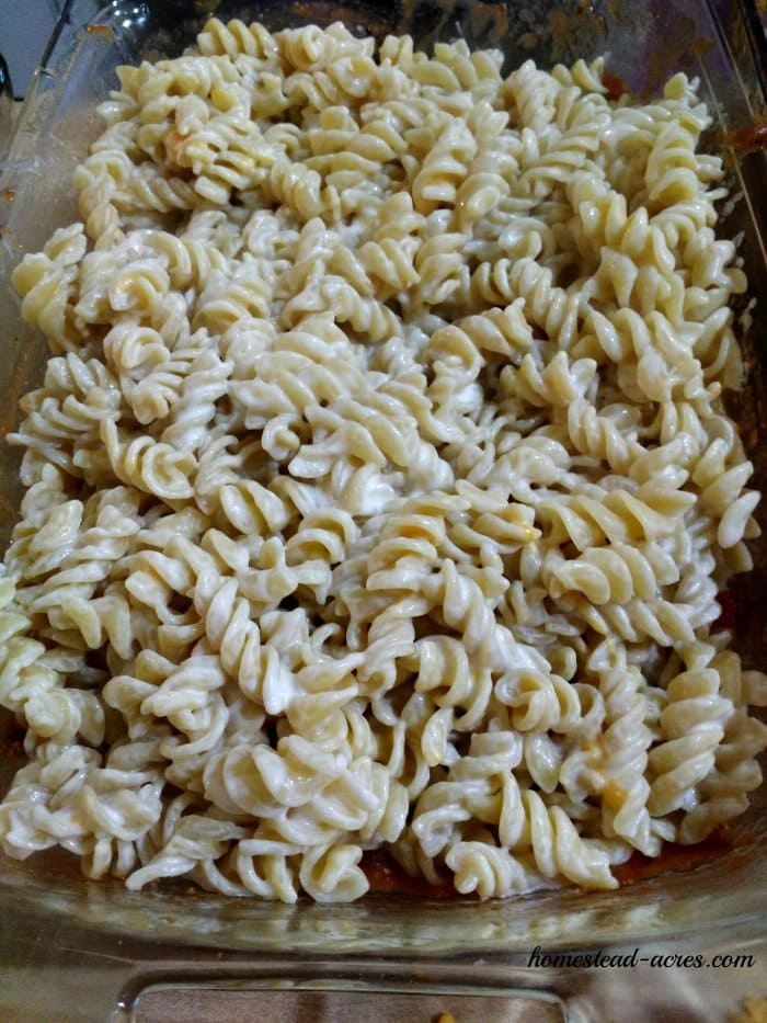 Layer pasta into the baking dish   www.homestead-acres.com