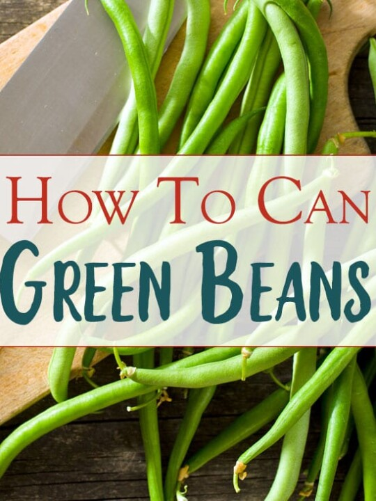 Canning Green Beans At Home