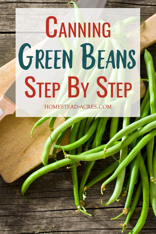 Canning Green Beans Step By Step