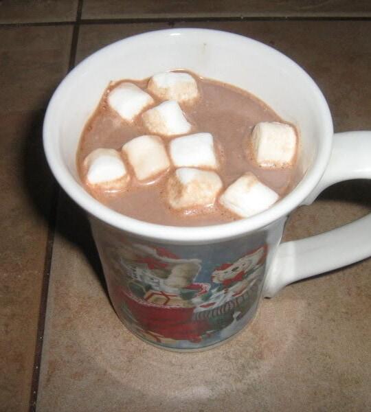 DIY hot chocolate mix | www.homestead-acres.com
