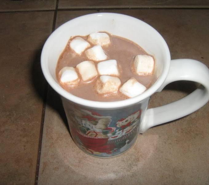 Delicious Hot Chocolate Mix Recipe