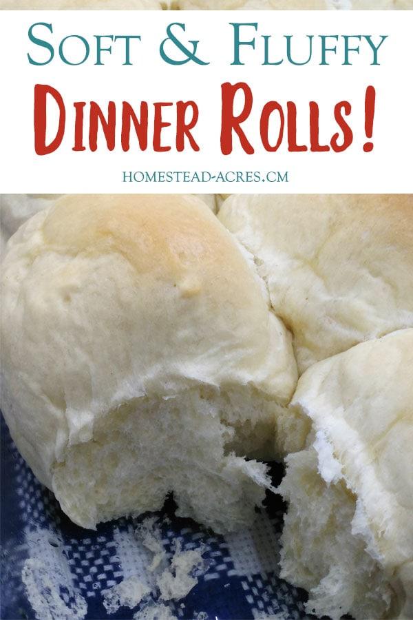 Best Ever Light And Fluffy Dinner Rolls