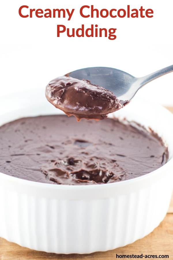 Homemade chocolate pudding in a white bowl on a wooden table with a spoonful being held above it. With over laid text Creamy Chocolate Pudding.