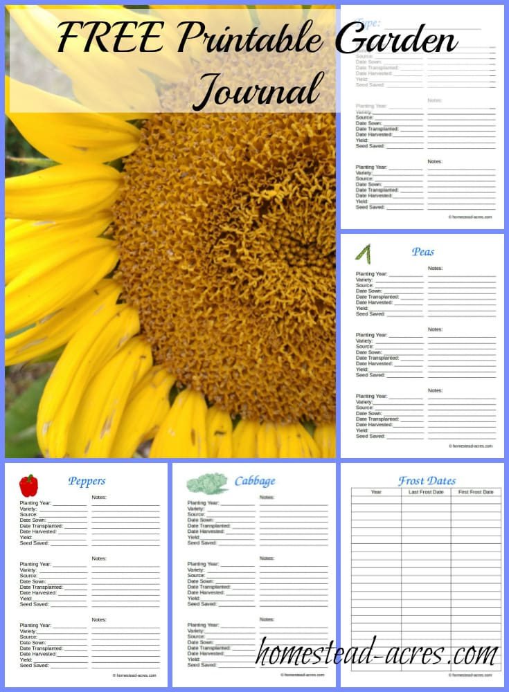 photograph regarding Printable Garden Journal titled Free of charge Printable Backyard garden Magazine - Homestead Acres