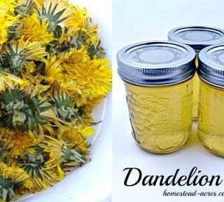 Dandelion252520Jelly2525201280x720_thumb.jpg