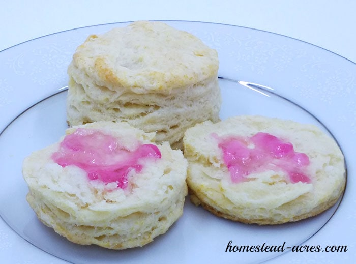 Wild Violet Jelly and Biscuits. This wild violet jelly recipe is so good!