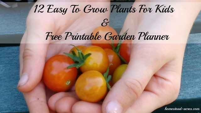 12 easy to grow plants for kids and a free printable garden planner.   www.homestead-acres.com