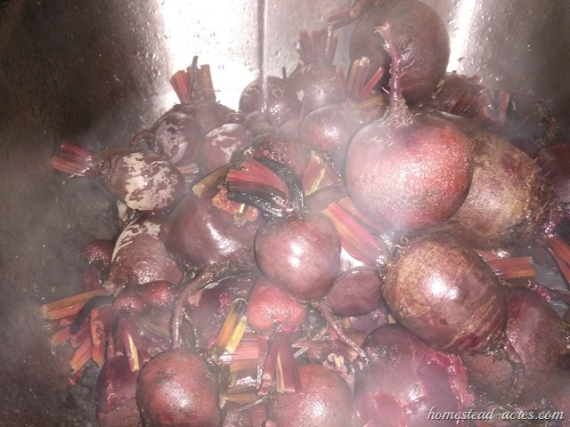 Cooling cooked beets until they are cool enough to remove the skins.
