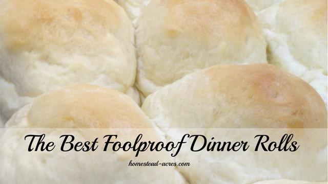 The best foolproof dinner rolls! | www.homestead-acres.com