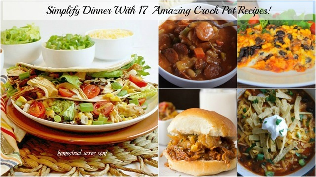 Simplify Dinner With 17 Amazing Crock Pot Recipes! | www.homestead-acres.com