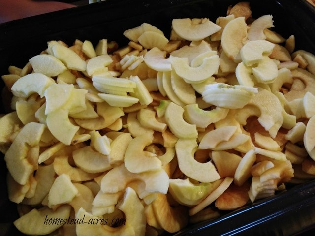 Sliced apples for making apple butter | www.homestead-acres.com