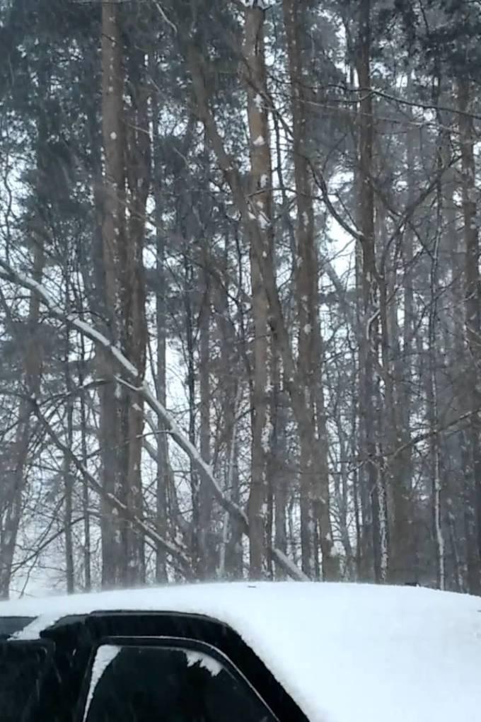 Crazy Winds & Snow