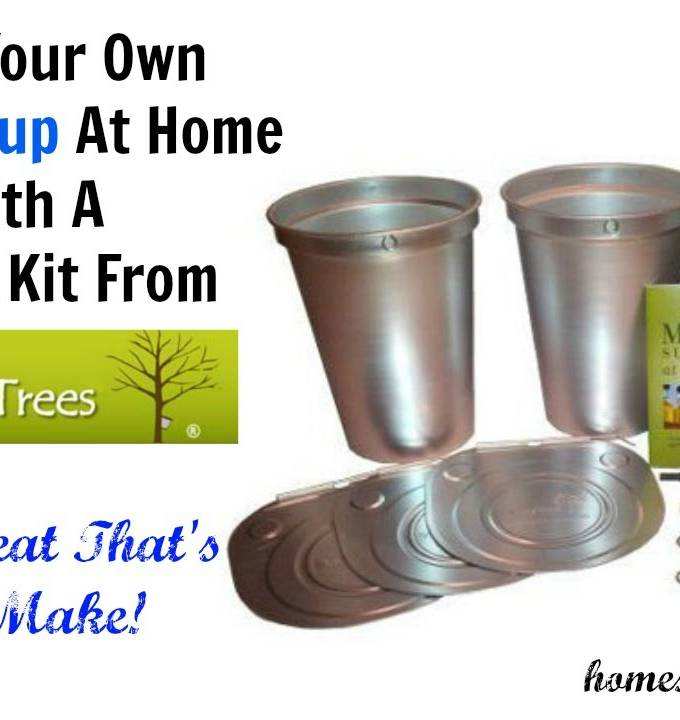 Making Maple Syrup At Home With Tap Your Trees – Review