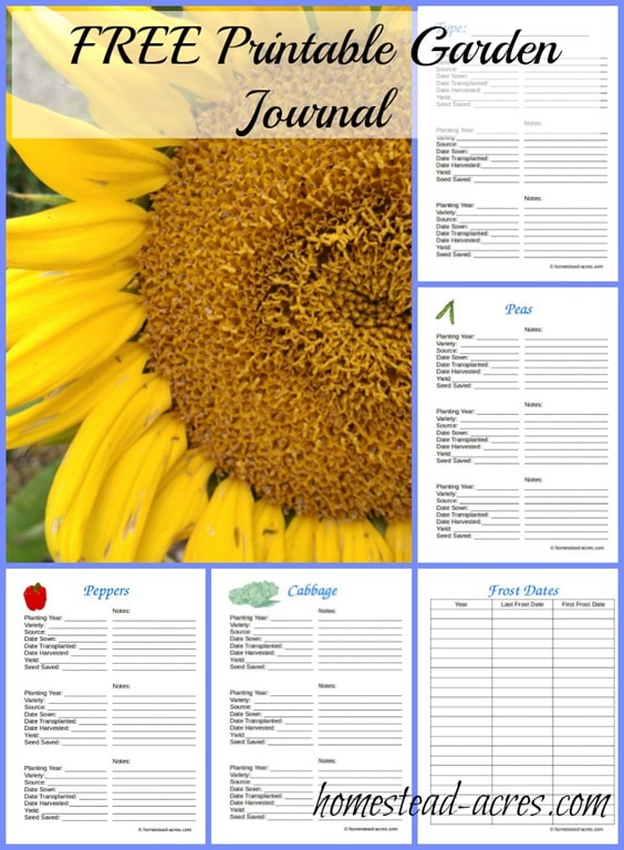 Dramatic image with printable garden journal