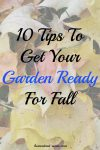 10 Tips To Get Your Garden Ready For Fall