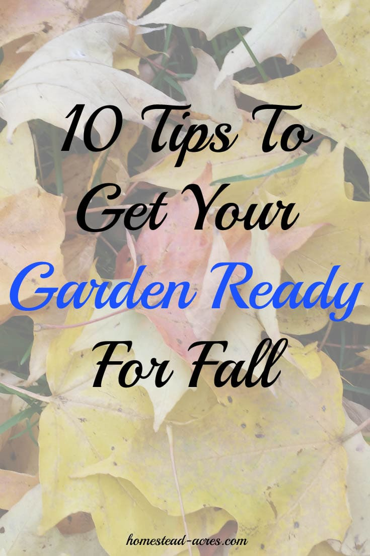 10 Tips to get your garden ready for fall so you can have a great growing season next year! | www.homestead-acres.com