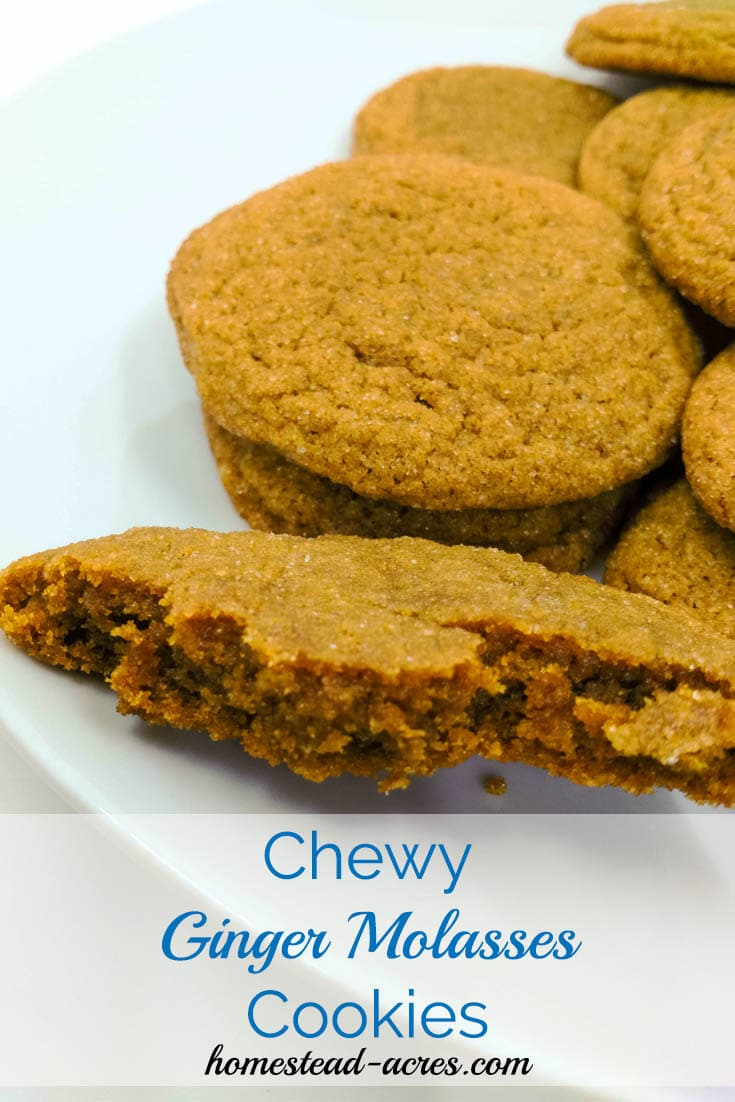 Chewy Ginger Molasses cookies on a plate | www.homestead-acres.com