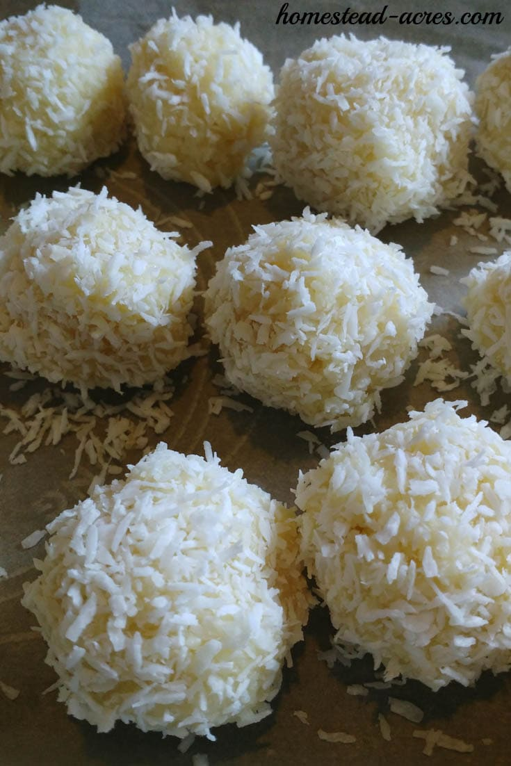 Chilling snowball cookies with coconut | www.homestead-acres.com