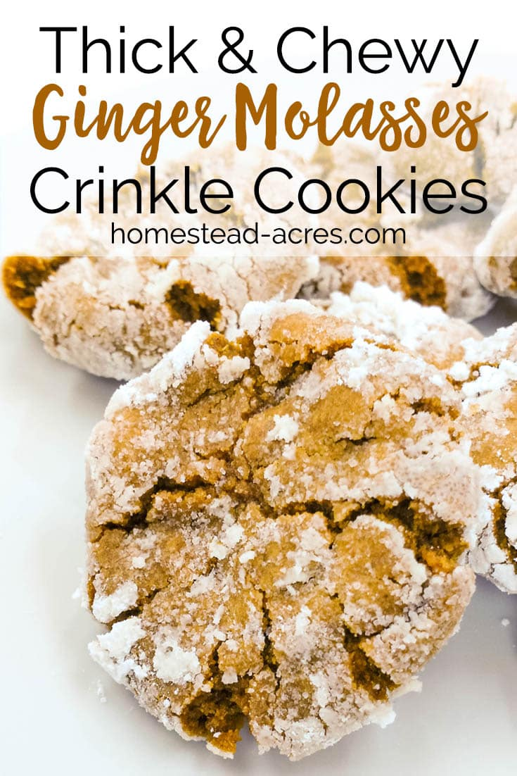 These are the best Ginger Molasses Crinkle Cookies ever! Really easy to make holiday cookies. Thick, soft and chewy gingerbread type cookies coated in powdered sugar. Yum, the perfect homemade Christmas cookie. #Christmas #cookierecipe #recipes