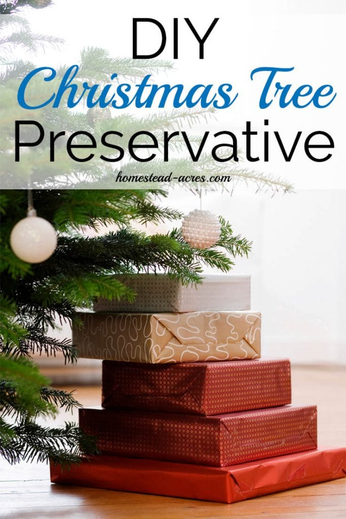 How to make your own Christmas Tree Preservative. Keep your Christmas tree looking green and healthy all through the season with these easy DIY recipes for Christmas tree food. | www.homestead-acres.com