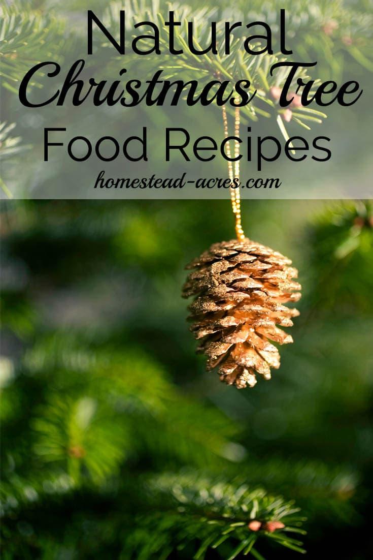 Natural Christmas Tree Food Recipes | www.homestead-acres.com