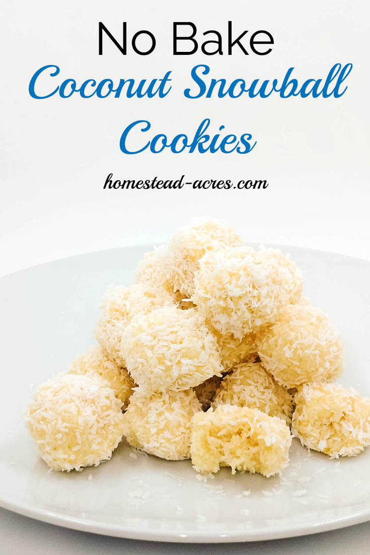 No Bake Coconut Snowball Cookies are so easy to make. The perfect Christmas treat they freeze well so can be made ahead of time. Recipe is also gluten free! | www.homestead-acres.com