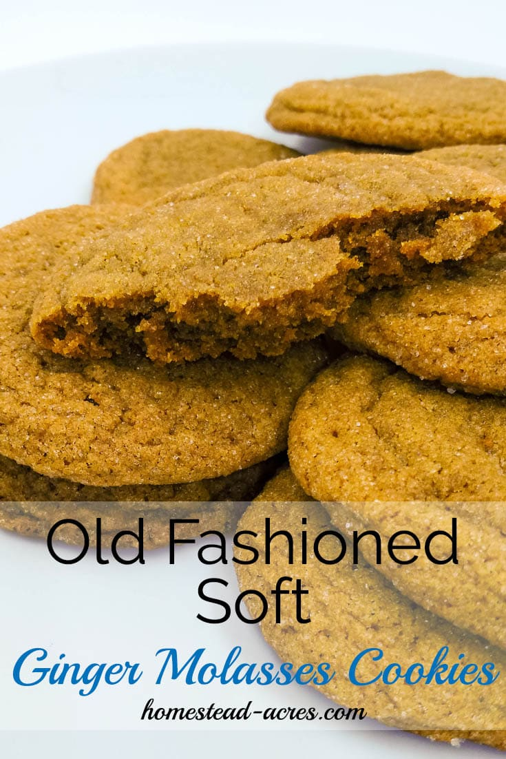 Old fashioned soft ginger molasses cookies. Quickand easy to make the dough doesn't require chilling! | www.homestead-acres.com