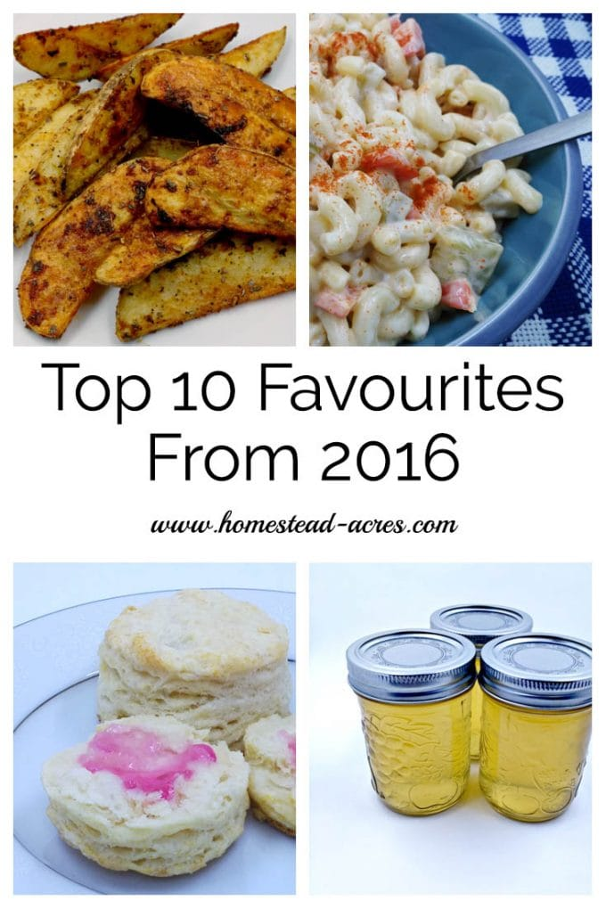 Top 10 favourite homesteading, gardening and homeschooling posts from 2016 | www.homestead-acres.com