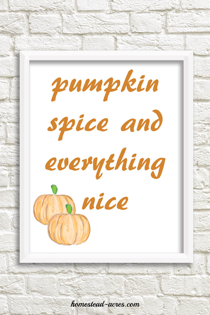 Pumpkin Spice and Everything Nice Orange Font printable | www.homestead-acres.com