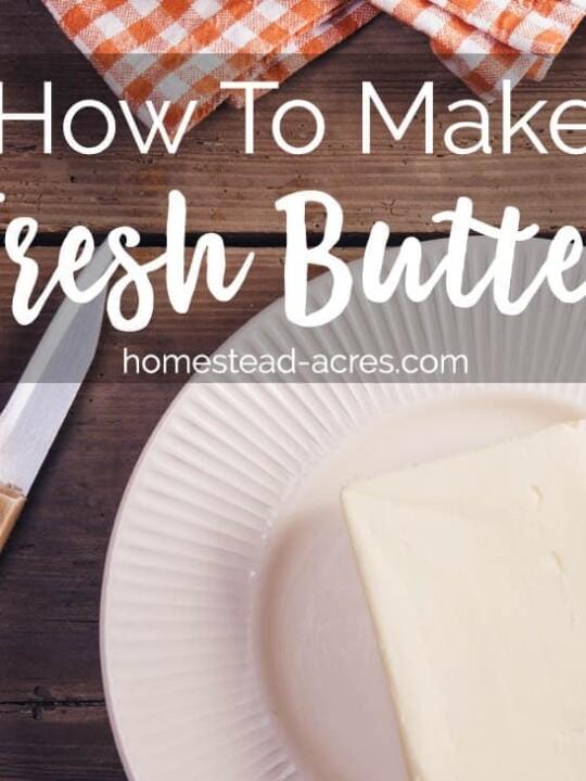 Homemade Fresh Butter Recipe www.homestead-acres.com