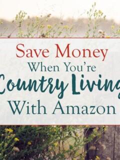 Saving Money Homesteading With Amazon overlay on a farm fence.
