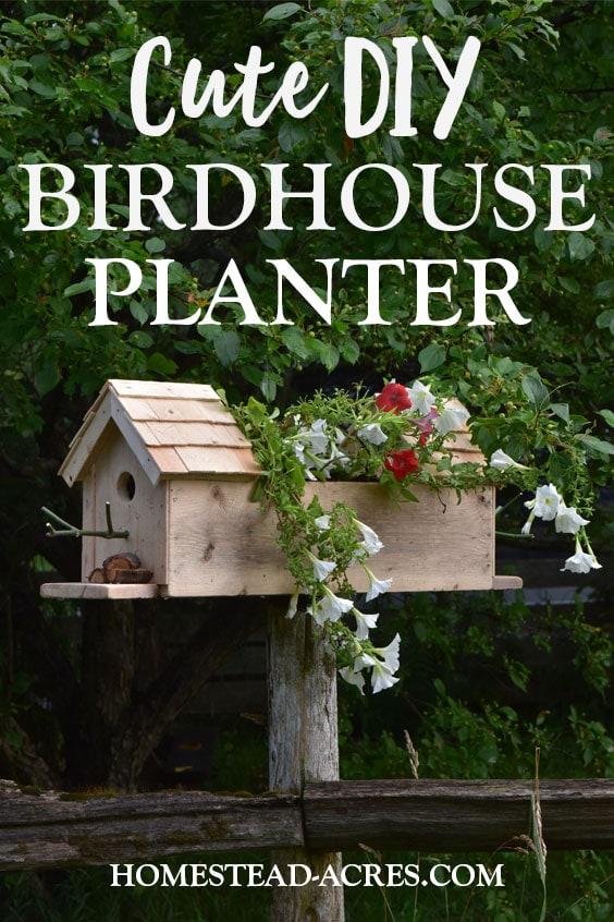 Cute DIY Birdhouse Planter