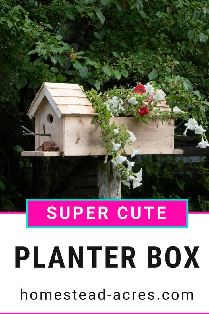 DIY Birdhouse Planter