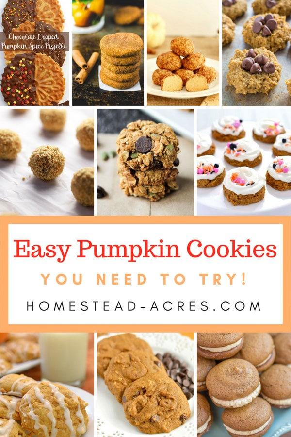 Easy Pumpkin Cookie Recipes