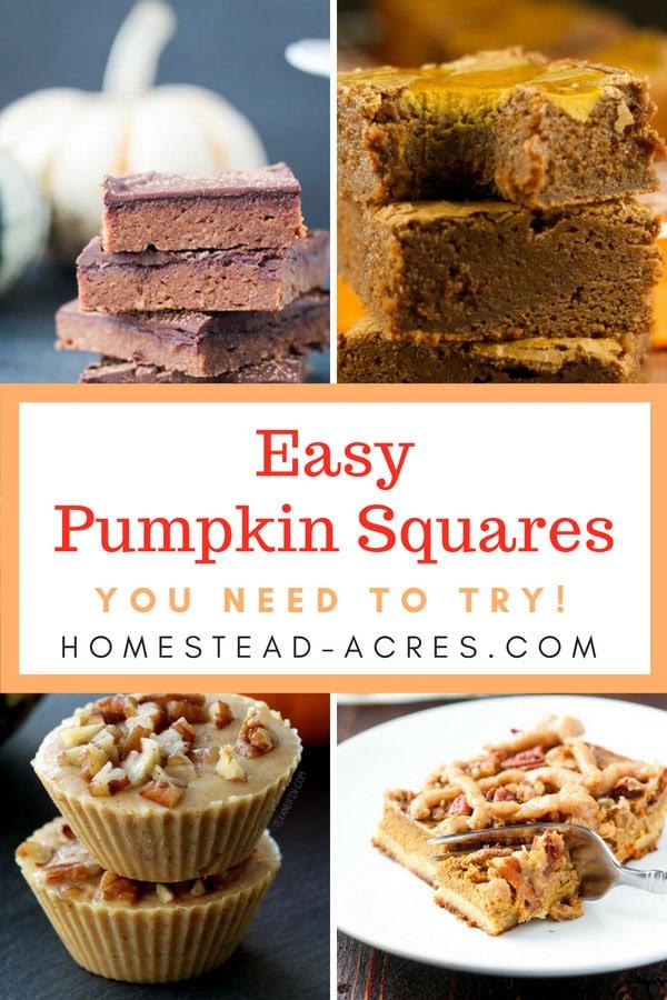Easy Pumpkin Squares Recipes