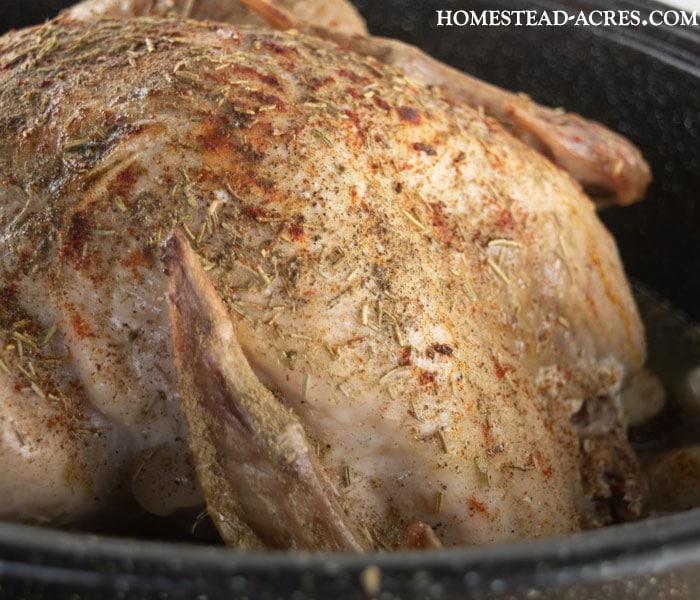 Seasoning A Frozen Turkey