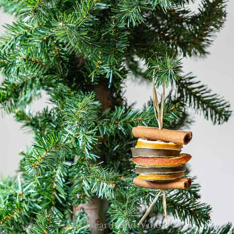 DIY Dried Sliced Fruit Ornament