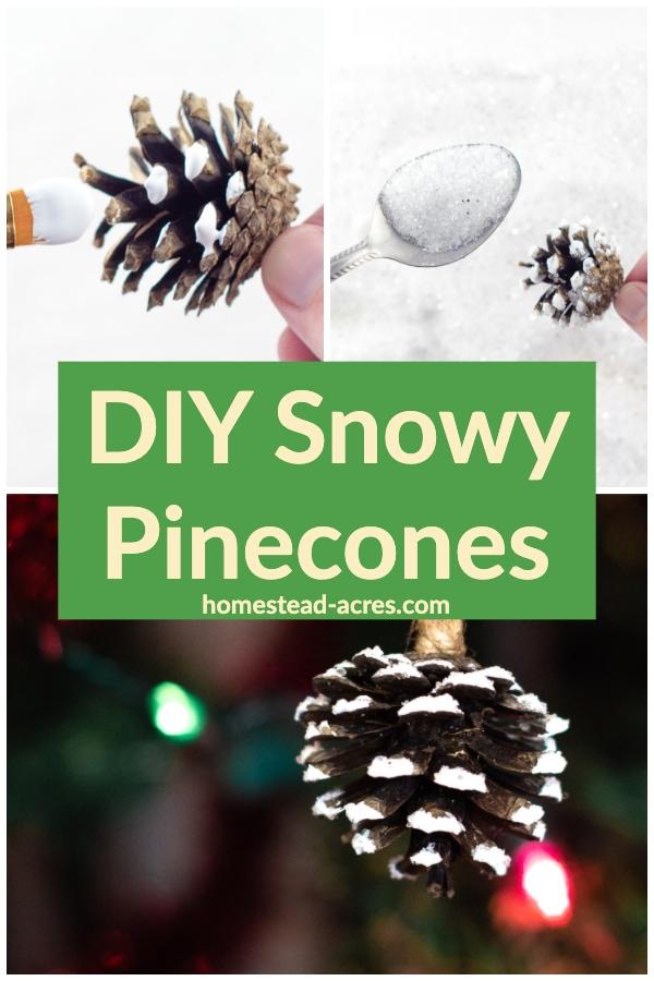 DIY Snowy Pinecones
