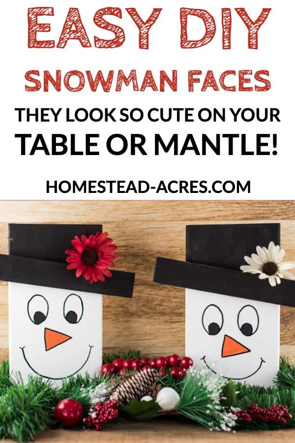 Easy DIY Snowman Faces
