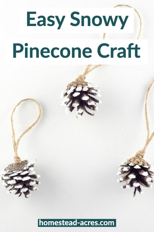 Easy Snowy Pinecone Craft Idea