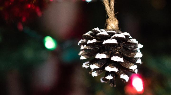 Easy Snowy Pinecone Craft