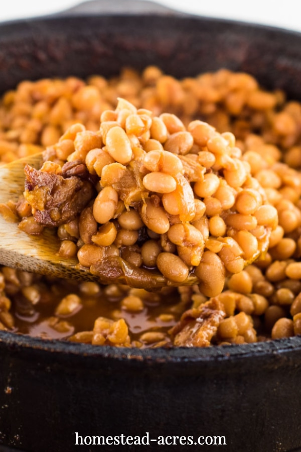 Old fashioned Boston baked beans in a dutch oven.