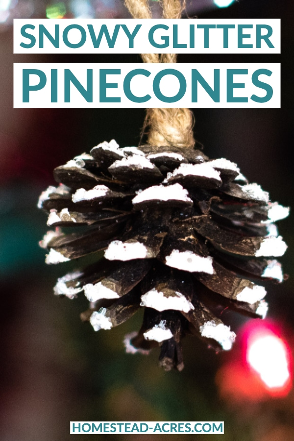 Snowy Glitter Pinecones text overlaid on a photo of a pincone hanging from a Christmas tree with the tips painted white and covered in glitter.