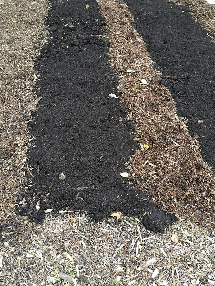 Finished no-dig garden ready to plant.